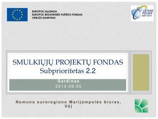 SMULKIŲJŲ PROJEKTŲ FONDAS Subprioritetas 2.2