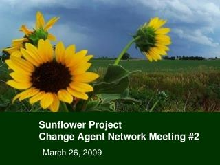 Sunflower Project Change Agent Network Meeting #2