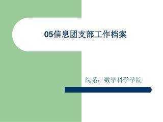 05 信息团支部工作档案