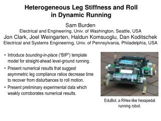 Heterogeneous Leg Stiffness and Roll in Dynamic Running