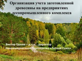 Организация учета заготовленной древесины на предприятиях лесопромышленного комплекса
