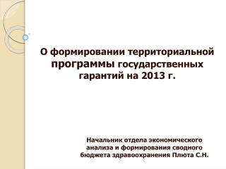 О формировании территориальной программы государственных гарантий на 2013 г.