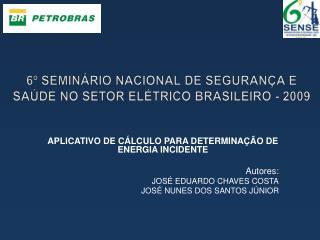 6º SEMINÁRIO NACIONAL DE SEGURANÇA E SAÚDE NO SETOR ELÉTRICO BRASILEIRO - 2009