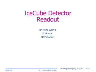 IceCube Detector Readout