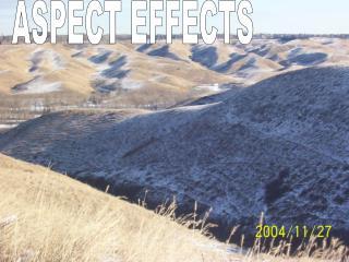 ASPECT EFFECTS