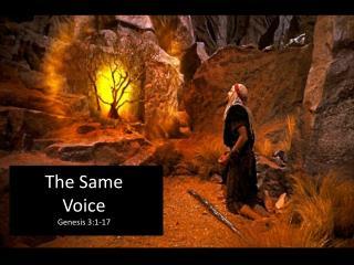 The Same Voice Genesis 3:1-17