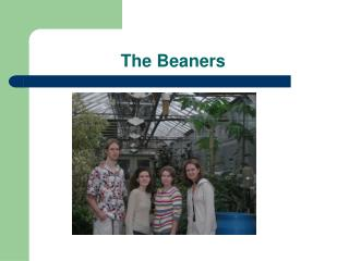 The Beaners