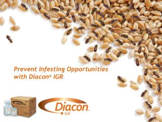 Prevent Infesting Opportunities with Diacon ®  IGR
