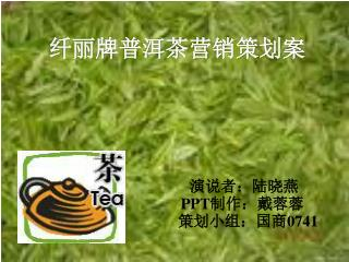 纤丽牌普洱茶营销策划案