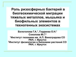 Белоголова Г.А. 1 , Гордеева О.Н. 1 Соколова М.Г. 2