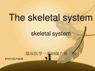The skeletal system skeletal system 临床医学一系 09 级八班一组