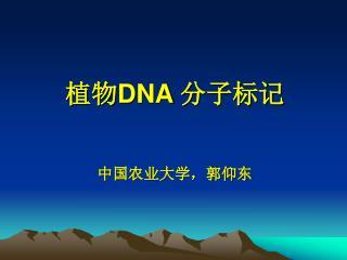 植物 DNA 分子标记 中国农业大学,郭仰东