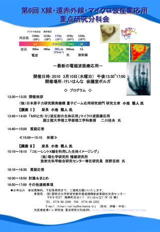 第 6 回 X 線・遠赤外線・マイクロ波産業応用重点研究分科会