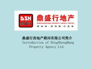 鼎盛行房地产顾问有限公司简介 Introduction of DingShengHang Property Agency Ltd.