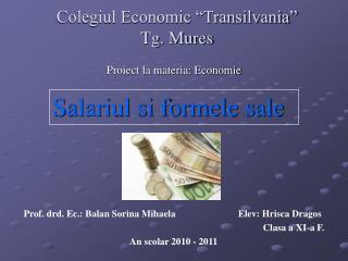 """Colegiul Economic """"Transilvania"""" Tg. Mures"""