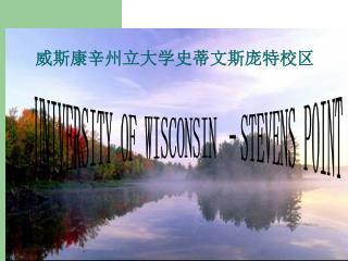 威斯康辛州立大学史蒂文斯庞特校区