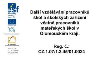 Reg. č.: CZ.1.07/1.3.45/01.0024