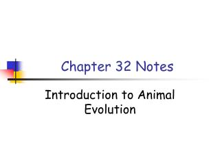 Chapter 32 Notes
