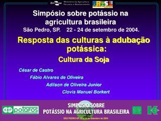 Simpósio sobre potássio na agricultura brasileira São Pedro, SP. 22 - 24 de setembro de 2004.