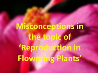 Misconceptions in the topic of 'Reproduction in Flowering Plants'