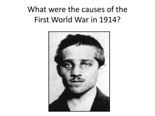 What were the causes of the First World War in 1914?