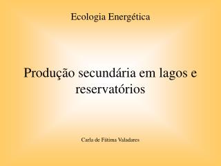 Produção secundária em lagos e reservatórios