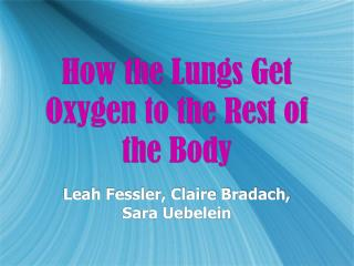 How the Lungs Get Oxygen to the Rest of the Body