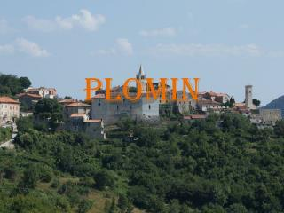 PLOMIN