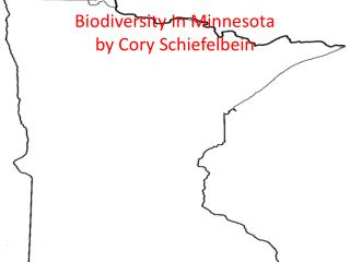 Biodiversity In Minnesota by Cory Schiefelbein