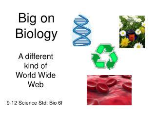 Big on Biology