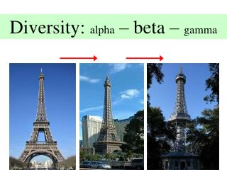 Diversity: alpha – beta – gamma