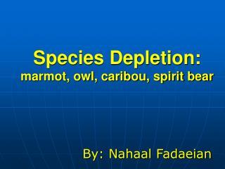 Species Depletion: marmot, owl, caribou, spirit bear