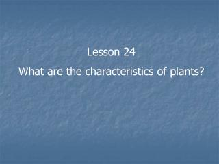 Lesson 24 What are the characteristics of plants?