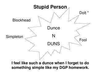 Dunce N DUNS
