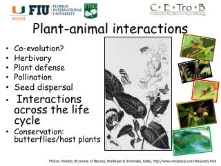Plant-animal interactions