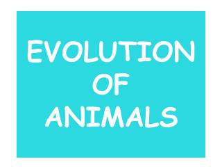EVOLUTION OF  ANIMALS