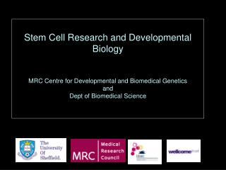 Developmental biology: a brief introduction to development, and to the use of animal model systems