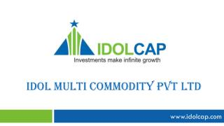 Idol Multi Commodity  pvt  ltd