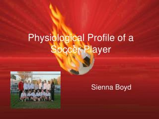 Physiological Profile of a Soccer Player