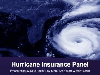 Hurricane Insurance Panel
