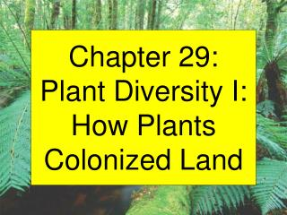 Chapter 29: Plant Diversity I: How Plants Colonized Land