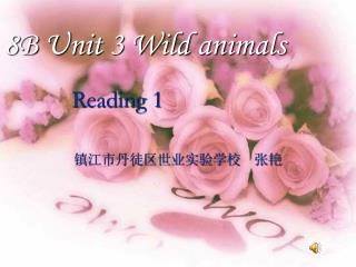 8B Unit 3 Wild animals