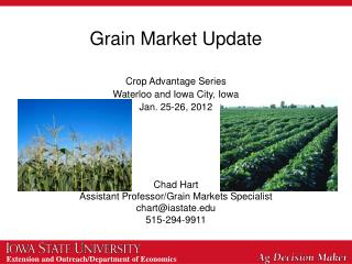 Grain Market Update