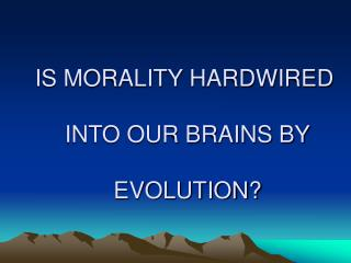 IS MORALITY HARDWIRED  INTO OUR BRAINS BY  EVOLUTION?