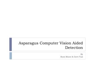 Asparagus Computer Vision Aided Detection