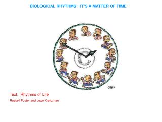 BIOLOGICAL RHYTHMS:  IT'S A MATTER OF TIME