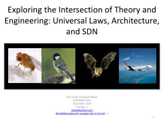 Exploring the Intersection of Theory and Engineering: Universal Laws, Architecture, and SDN