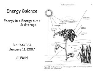 Energy Balance Energy in = Energy out + Δ  Storage