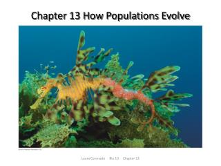 Chapter 13 How Populations Evolve