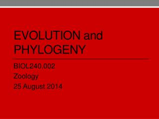 Evolution  and  Phylogeny